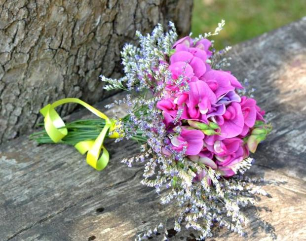 sweet_pea-april_alternate_flower-1920x1280px-pixabay_full_width