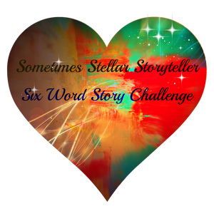 Sometimes Stellar Storyteller Logo